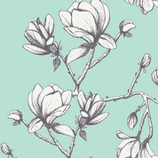 Magnolia Study Fresh In Canvas From Wild Bloom Designed By Bari J. For AGF